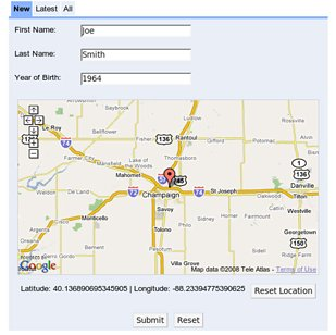 DSE web form: Input web form for entering temporal, spatial and content information.